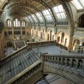 Natural History Museum, London - UK